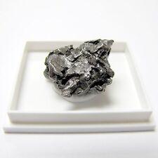 Campo del Cielo Meteorite Iron Meteor Space Rock FREE SHIPPING IN USA!