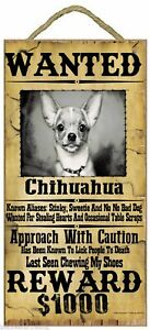 """Wanted Western Poster Style Chihuahua Funny Dog Pet Sign Plaque 5""""x10"""""""