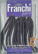 Franchi Seeds Climbing French Bean Trionfo Violetto seed