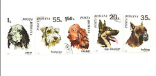 A  set of 5 different Dog postage Stamps from Romania.