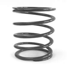 Primary Drive Clutch Spring Epi Ps-6