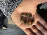 Genuine Grade A+ Moldavite Single Bead (Czech Republic) AAA Specimen Powerful!