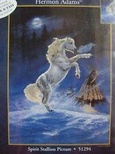 Hermon Adams Spirit Stallion White Horse Embellished Cross Stitch Kit