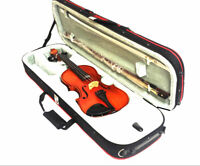 McNeela Hidersine Vivente Violin 1/2 Size with Case