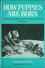 HOW PUPPIES ARE BORN -ILLUSTRATED GUIDE ON WHELPING & CARE OF PUPPIES, 1972 BOOK