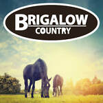 Brigalow Country Official