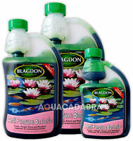Blagdon Anti Fungus & Bacteria Fish Pond Treatment 250ml 500ml 1000ml Interpet