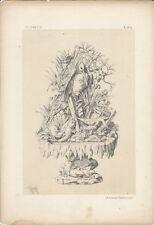 1866 Design Lithograph of Renaissance Design by Michel Joseph Napoleon Lienard