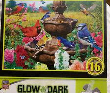 Master Pieces  Glow in the Dark  Jigsaw Puzzle Garden Of Song Birds Flower
