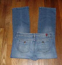 Womens Jeans Size 10 P - Hillard & Hanson LRBC Distressed Stretch
