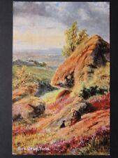 Yorkshire: Birk Crag c1906 by S. Hildesheimer - Yorkshire Views
