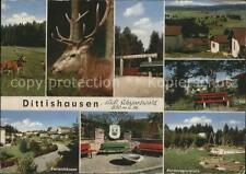 41805848 Dittishausen Wildpark Hirsche Ferienhaeuser Park Kinderspielplatz Ditti