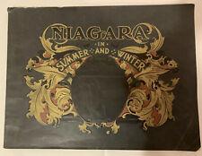 "1906 Era ""Niagara In Summer And Winter"" Early Pictures Of Niagara Falls"