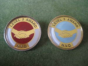 NVQ AWARD Qualification 2 & 3 Lapel Pin Badge CARE ASSISTANT, CARE HOME