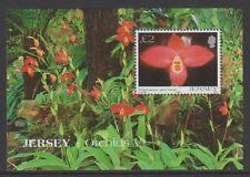 Jersey - 2004, Orchids Flowers sheet - MNH - SG MS1149