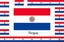 Assortiment 10 autocollants Vinyle sticker drapeau Paraguay