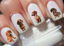Dachshund Nail Art Stickers Transfers Decals Set of 47
