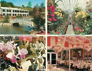 """Patricia Murphy's Postcard 5.5"""" x 7"""" Candlelight Restaurant Yonkers NY 1960+/-"""