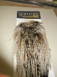 Whiting American hackle rooster saddle. bronze grade. Unique Variant.