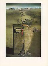 """1976 Vintage SALVADOR DALI """"SPAIN"""" LOVELY & FAMOUS COLOR Art Print Lithograph"""