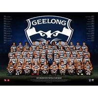 AFL 2017 Team Geelong Cats POSTER 60x80cm NEW Aussie Football League Players