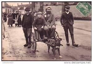 LOIRET - Sennely - Attelage de chien
