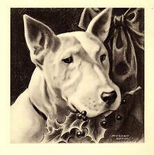 1947 Antique Bull Terrier Art Print Vintage Morgan Dennis Dog Art 3874a