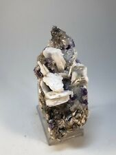 FLUORITA - Fluorite - Area minera de Berbes, Asturias - SPAIN MINERAL 12x5x4