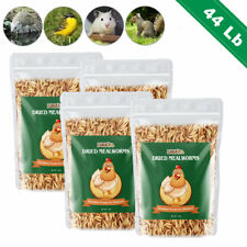 New listing 44Lbs Dried Mealworms Bulk Non Gmo Organic Chickens Feed Hen Blue Birds Gliders