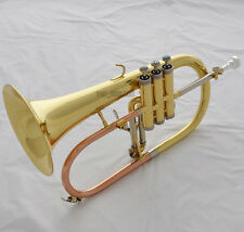 New Professional Gold Bb Flugelhorn Horn Monel Valve ABALONE Shell Key With Case