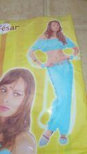 Belly Dancer Bollywood Arabian Princess Ladies Fancy Dress Costume - One Size