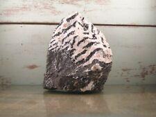 Zebra Jasper Natural Stone Rock Cabbing Slab Lapidary 7lbs 10oz {X3638FH}