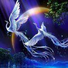 5D Diamond Painting Cross Stitch Kits Round Drill White Phoenixes Decor Gifts