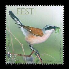 """Estonia 2010 - Bird of Year """"Shrike"""" Animals Fauna - Sc 645 MNH"""