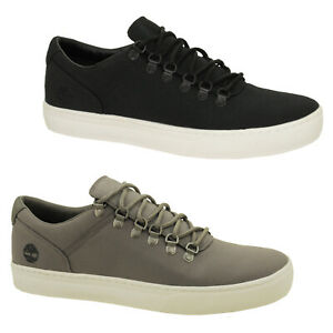 Timberland Adventure 2.0 Cup Sole Alpine Oxford Trainers Men Lace Up