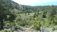 Colorado Mountain Acerage. PRIME !!!