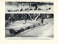 ESKIMO HUSKY SLED DOG TEAMS ON THE PLAINS AND IN THE MOUNTAINS 1934 DOG PRINT