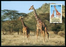 KENIA MK FAUNA GIRAFFE KENYA ANIMALS MAXIMUMKARTE CARTE MAXIMUM CARD MC CM bf23