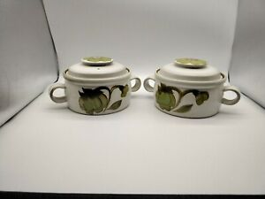 Vintage Denby Set of Two Vegetable Dishes with Lid - Troubadour Pattern #648