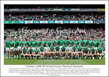 Limerick All-Ireland Senor Hurling Champions 2018 : GAA Print