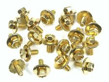 Body Bolts- M6-1.0 x 16mm Long- 19mm Washer- 10mm Hex- 20 bolts- G#170