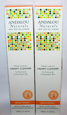 Lot Of 2 Andalou Naturals MEYER LEMON Creamy Cleanser Normal & Combination Skin