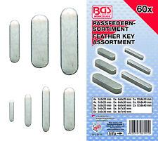 BGS! Passfedern-Sortiment | 60-tlg.