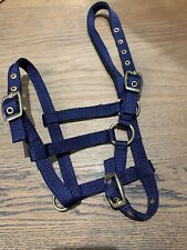 Foal Headcollar, Nylon Brass, Foal, Shetland, Mini, NAVY BLUE, FREE UK Postage