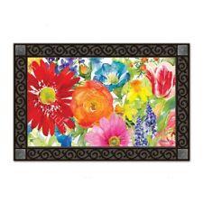 MatMates Splash of Color Doormat