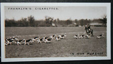 Essex Union Foxhounds    Shenfield     Vintage 1920's Photo Card  VGC / EXC