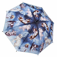 Galleria Stick Umbrella - Raining Cats and Dogs