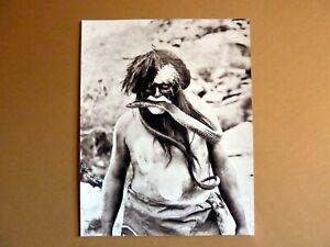 American Old West  Hopi Indian Snake Dancer Priest  11x14 Photo