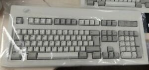 IBM Model M keyboard White Label 1989 - Rare ISO Dutch layout with side legends