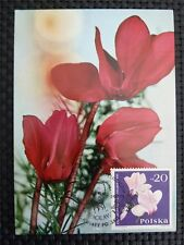 POLEN MK 1978 FLORA BLUMEN MAXIMUMKARTE CARTE MAXIMUM CARD MC CM c1399